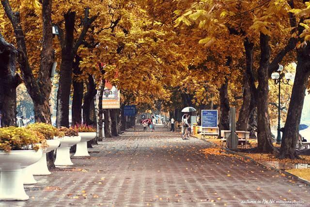 mùa thu hà nội rất đẹp