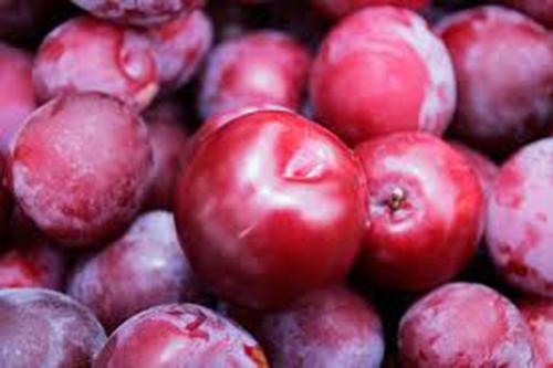Mận là 1 loại quả ăn nhiều sẽ mọc mụn