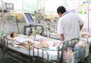 Bệnh viêm não Nhật Bản nguy hiểm thế nào ?