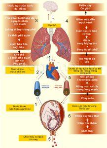 Sinh lý bệnh của tắc mạch ối