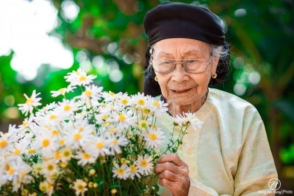 cúc họa mi phiên bản bà ngoại