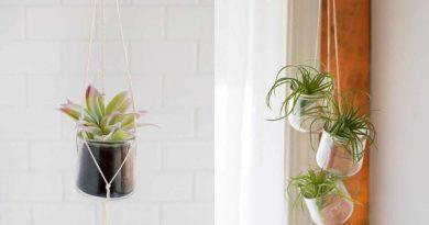 Làm chậu cây đơn giản lại đẹp bằng cách tái chế lọ thủy tinh cũ