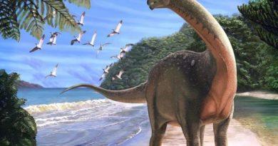 Ngủ mơ thấy khủng long là phúc hay họa dữ hay lành
