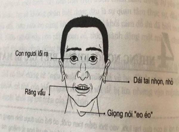tuong-dan-ong-vu-phu